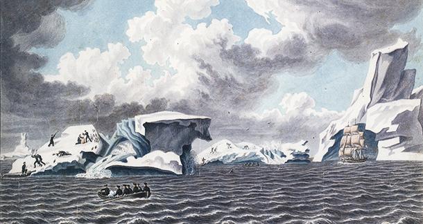 610 Антарктида